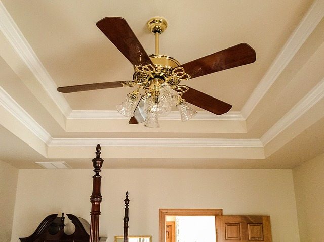 beautiful ceiling fan