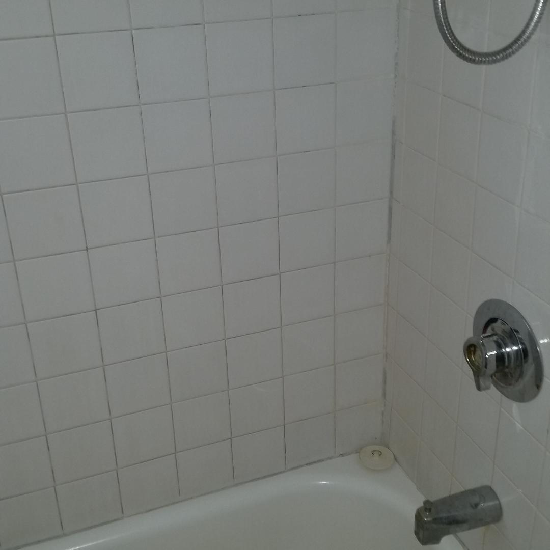 Cleaner bath
