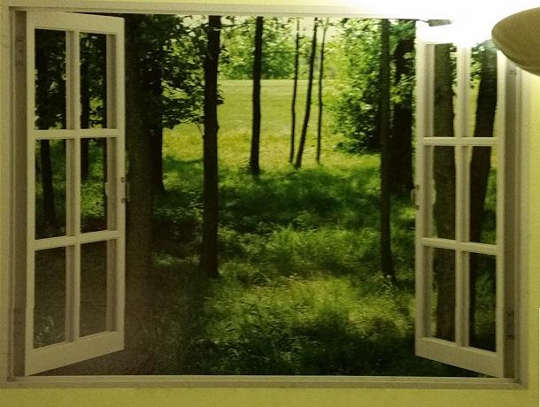 My new window
