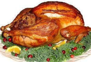 thanksgiving_turkey
